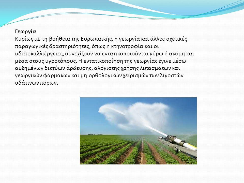 Γεωργία Κυρίως με τη βοήθεια της Ευρωπαϊκής, η γεωργία και άλλες σχετικές παραγωγικές δραστηριότητες, όπως η κτηνοτροφία και οι υδατοκαλλιέργειες, συνεχίζουν να εντατικοποιούνται γύρω ή ακόμη και μέσα στους υγροτόπους.