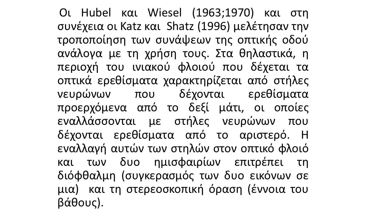 Οι Hubel και Wiesel (1963;1970) και στη συνέχεια οι Katz και Shatz (1996) μελέτησαν την τροποποίηση των συνάψεων της οπτικής οδού ανάλογα με τη χρήση τους.