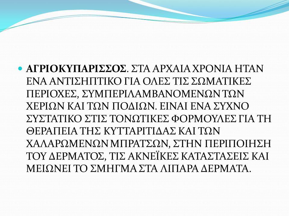 ΑΓΡΙΟΚΥΠΑΡΙΣΣΟΣ.