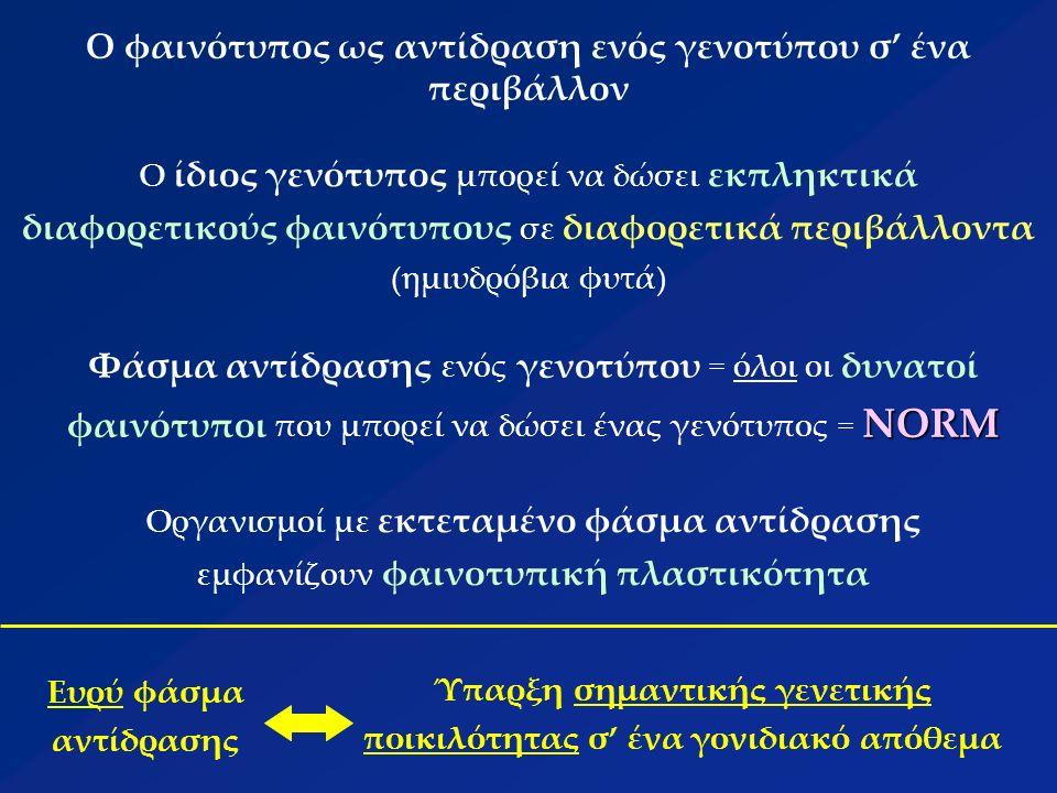 Ο φαινότυπος ως αντίδραση ενός γενοτύπου σ' ένα περιβάλλον Ο ίδιος γενότυπος μπορεί να δώσει εκπληκτικά διαφορετικούς φαινότυπους σε διαφορετικά περιβάλλοντα (ημιυδρόβια φυτά) NORM Φάσμα αντίδρασης ενός γενοτύπου = όλοι οι δυνατοί φαινότυποι που μπορεί να δώσει ένας γενότυπος = NORM Οργανισμοί με εκτεταμένο φάσμα αντίδρασης εμφανίζουν φαινοτυπική πλαστικότητα Ευρύ φάσμα αντίδρασης Ύπαρξη σημαντικής γενετικής ποικιλότητας σ' ένα γονιδιακό απόθεμα
