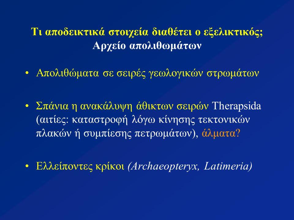 Τι αποδεικτικά στοιχεία διαθέτει ο εξελικτικός; Αρχείο απολιθωμάτων Απολιθώματα σε σειρές γεωλογικών στρωμάτων Σπάνια η ανακάλυψη άθικτων σειρών Therapsida (αιτίες: καταστροφή λόγω κίνησης τεκτονικών πλακών ή συμπίεσης πετρωμάτων), άλματα.