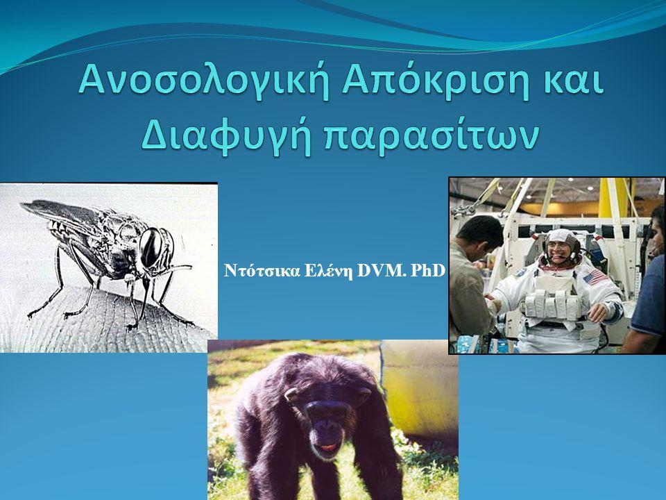 Ντότσικα Ελένη DVM. PhD