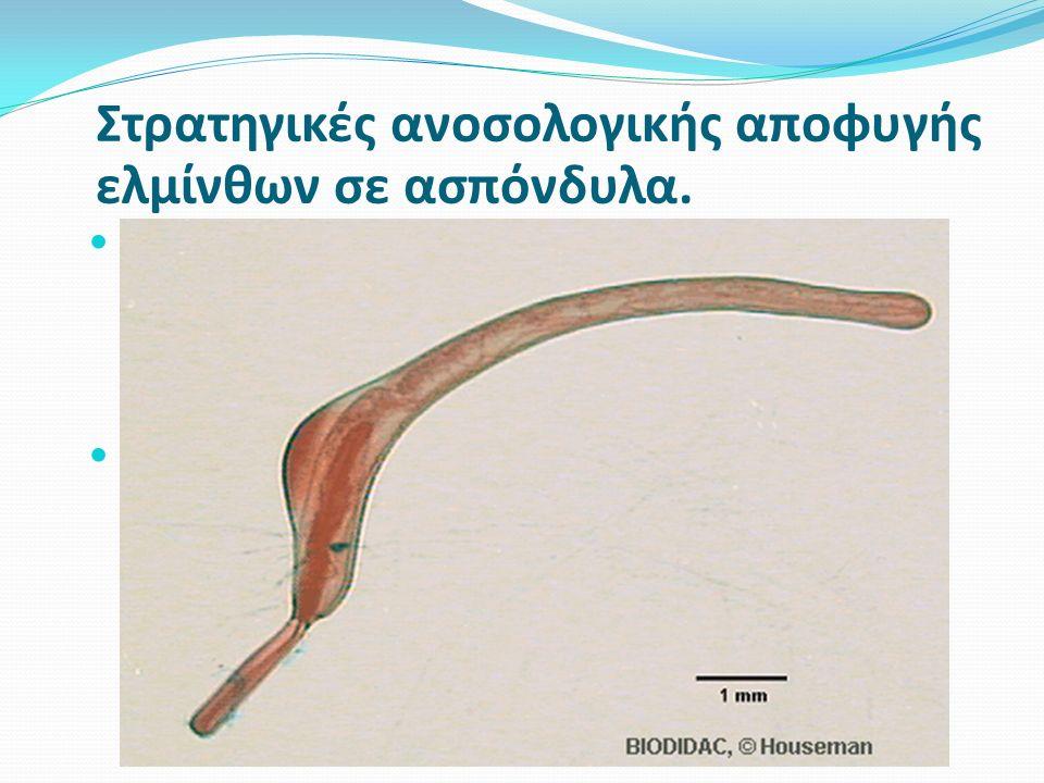 Ανατομικός αποκλεισμός– Acanthocephala acanthors διατηρούν ιστούς του ξενιστή στην επιφάνειά τους.