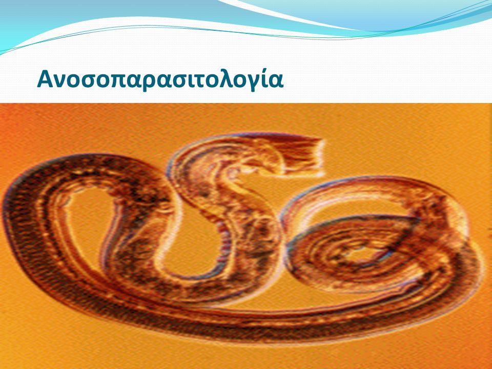 Ανοσοπαρασιτολογία Αυτοίαση – συμβαίνει όταν τα παράσιτα εγκαθίστανται αλλά τελικά αποβάλλονται π.χ., Nippostrongylus brasiliensis.