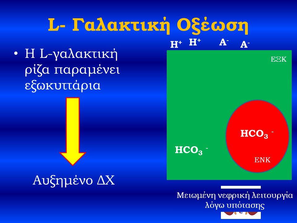 L- Γαλακτική Οξέωση H L-γαλακτική ρίζα παραμένει εξωκυττάρια Αυξημένο ΔΧ HCO 3 - H+H+ A-A- ΕΞΚ ENK H+H+ A-A- HCO 3 - Μειωμένη νεφρική λειτουργία λόγω υπότασης