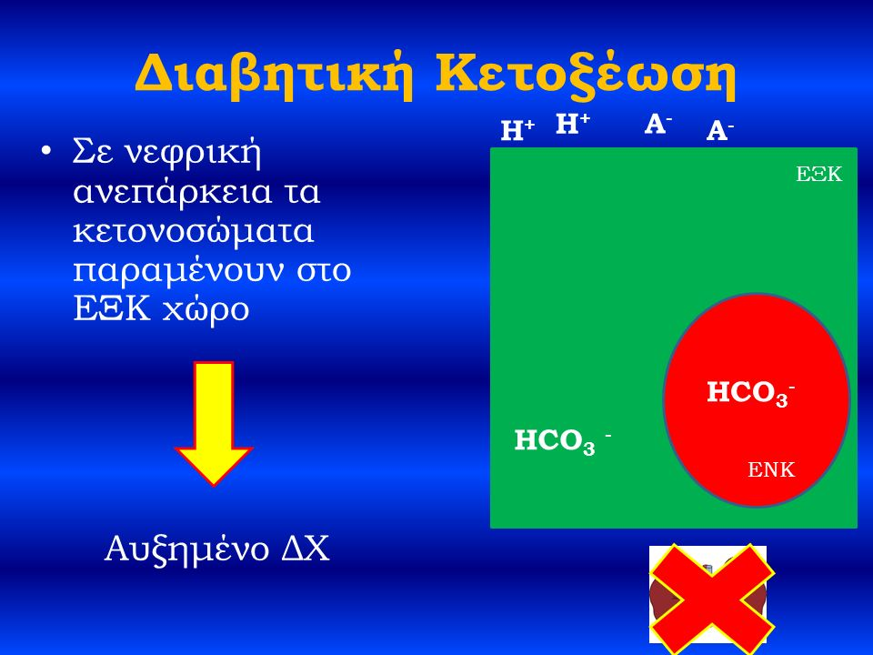 Διαβητική Κετοξέωση Σε νεφρική ανεπάρκεια τα κετονοσώματα παραμένουν στο ΕΞΚ χώρο Αυξημένο ΔΧ HCO 3 - H+H+ A-A- ΕΞΚ ENK H+H+ A-A- HCO 3 -