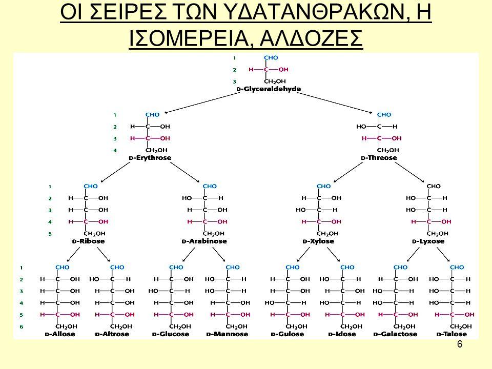 37 Υαλουρονικό οξύ Το υαλουρονικό οξύ είναι βασικό συστατικό του δέρματος και παράγεται από τους ινοβλάστες.