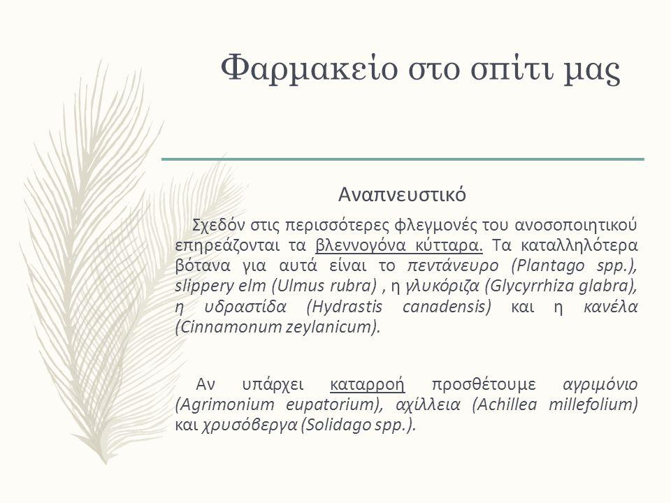 Μέντα Mentha officinalis x M.