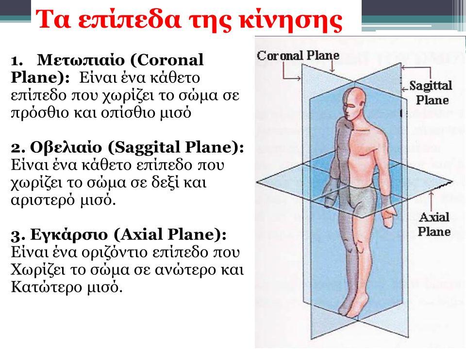 1.Μετωπιαίο (Coronal Plane): Είναι ένα κάθετο επίπεδο που χωρίζει το σώμα σε πρόσθιο και οπίσθιο μισό 2. Οβελιαίο (Saggital Plane): Είναι ένα κάθετο ε