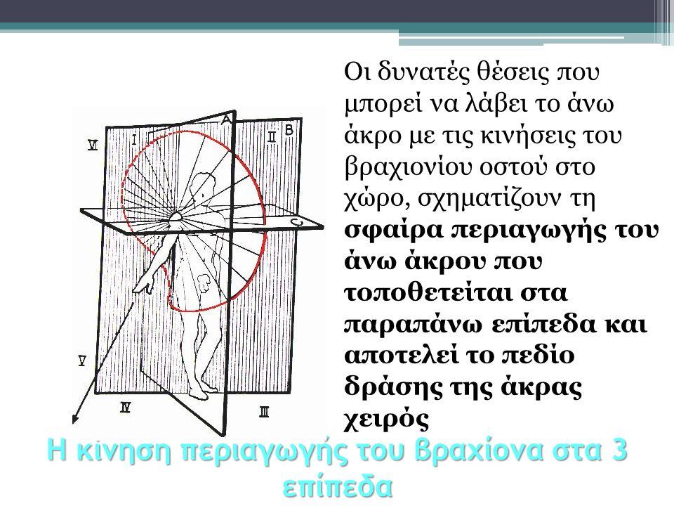 Η κίνηση περιαγωγής του βραχίονα στα 3 επίπεδα Οι δυνατές θέσεις που μπορεί να λάβει το άνω άκρο με τις κινήσεις του βραχιονίου οστού στο χώρο, σχηματ