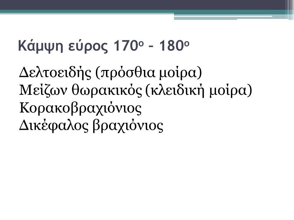 Κάμψη εύρος 170 ο – 180 ο Δελτοειδής (πρόσθια μοίρα) Μείζων θωρακικός (κλειδική μοίρα) Κορακοβραχιόνιος Δικέφαλος βραχιόνιος