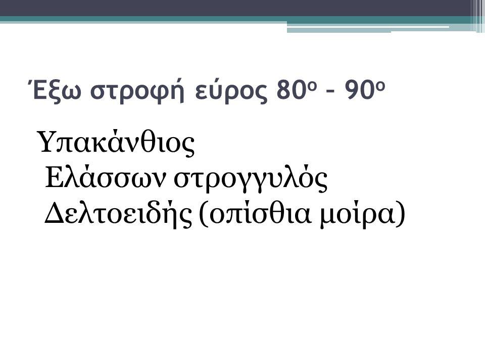 Έξω στροφή εύρος 80 ο – 90 ο Υπακάνθιος Ελάσσων στρογγυλός Δελτοειδής (οπίσθια μοίρα)