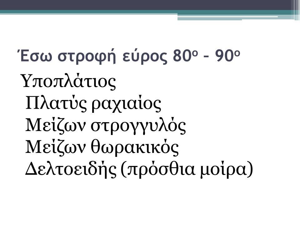 Έσω στροφή εύρος 80 ο – 90 ο Υποπλάτιος Πλατύς ραχιαίος Μείζων στρογγυλός Μείζων θωρακικός Δελτοειδής (πρόσθια μοίρα)