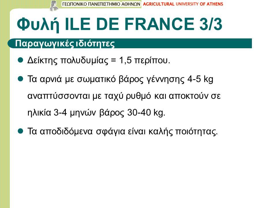 Φυλή ILΕ DE FRANCE 3/3 Δείκτης πολυδυμίας = 1,5 περίπου. Τα αρνιά με σωματικό βάρος γέννησης 4-5 kg αναπτύσσονται με ταχύ ρυθμό και αποκτούν σε ηλικία