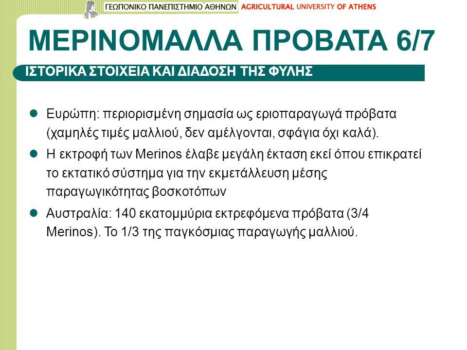 ΜΕΡΙΝΟΜΑΛΛΑ ΠΡΟΒΑΤΑ 6/7 Ευρώπη: περιορισμένη σημασία ως εριοπαραγωγά πρόβατα (χαμηλές τιμές μαλλιού, δεν αμέλγονται, σφάγια όχι καλά).