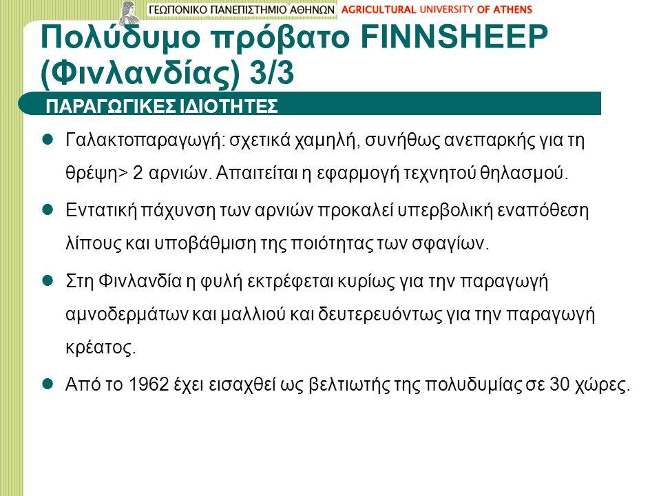 Πολύδυμο πρόβατο FINNSHEEP (Φινλανδίας) 3/3 Γαλακτοπαραγωγή: σχετικά χαμηλή, συνήθως ανεπαρκής για τη θρέψη> 2 αρνιών. Απαιτείται η εφαρμογή τεχνητού