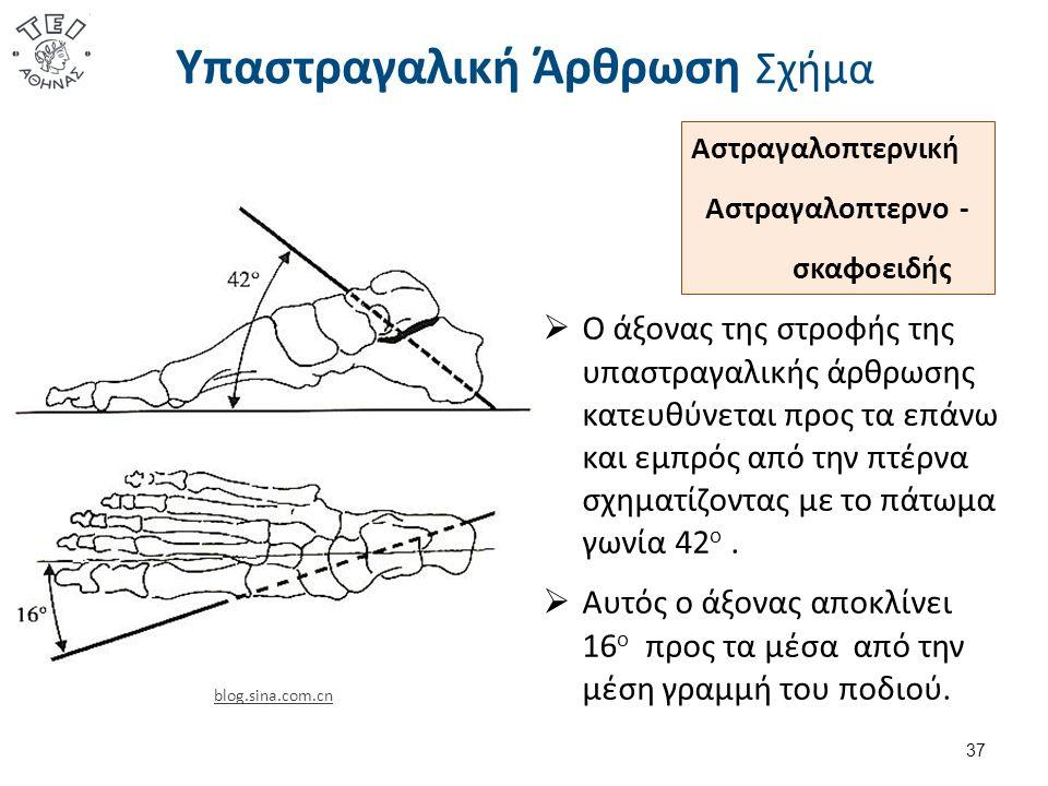 Υπαστραγαλική Άρθρωση Σχήμα  Ο άξονας της στροφής της υπαστραγαλικής άρθρωσης κατευθύνεται προς τα επάνω και εμπρός από την πτέρνα σχηματίζοντας με τ