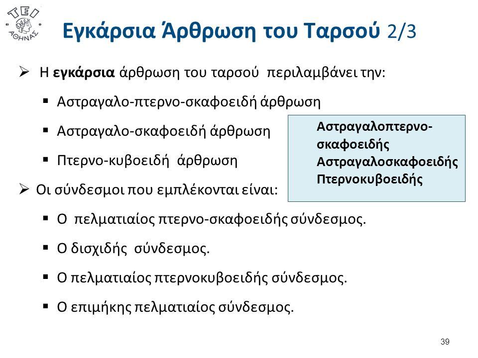 Εγκάρσια Άρθρωση του Ταρσού 2/3  Η εγκάρσια άρθρωση του ταρσού περιλαμβάνει την:  Αστραγαλο-πτερνο-σκαφοειδή άρθρωση  Αστραγαλο-σκαφοειδή άρθρωση 