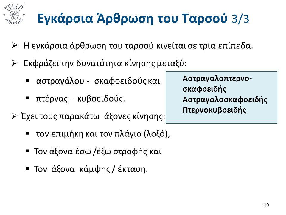 Εγκάρσια Άρθρωση του Ταρσού 3/3  Η εγκάρσια άρθρωση του ταρσού κινείται σε τρία επίπεδα.  Εκφράζει την δυνατότητα κίνησης μεταξύ:  αστραγάλου - σκα