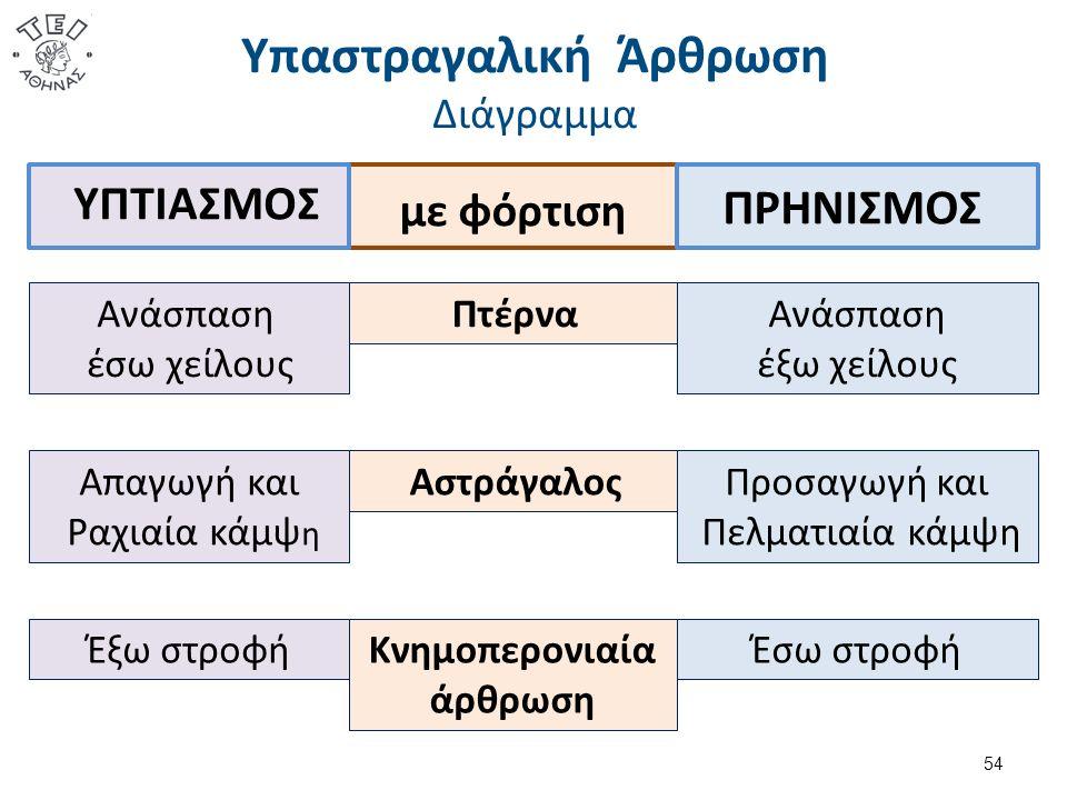 Υπαστραγαλική Άρθρωση Διάγραμμα 54 Κνημοπερονιαία άρθρωση με φόρτιση Πτέρνα Αστράγαλος Ανάσπαση έξω χείλους Προσαγωγή και Πελματιαία κάμψη Έξω στροφή