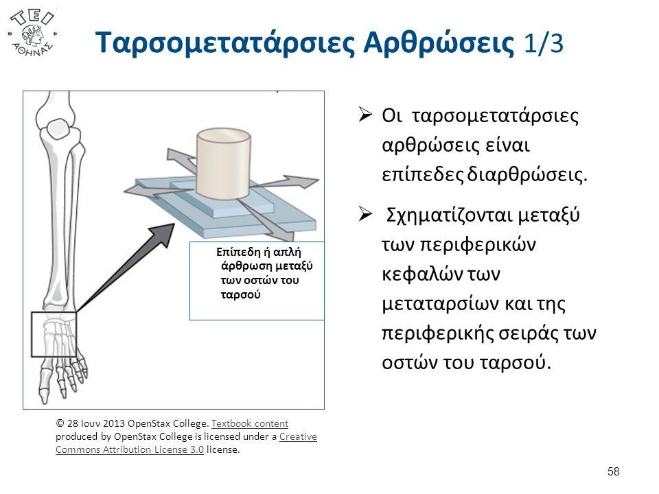 Ταρσομετατάρσιες Αρθρώσεις 1/3 58 Επίπεδη ή απλή άρθρωση μεταξύ των οστών του ταρσού © 28 Ιουν 2013 OpenStax College. Textbook content produced by Ope