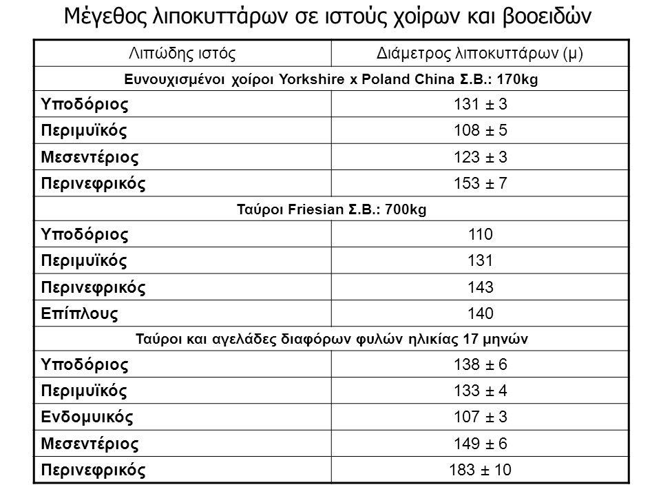 Λιπώδης ιστόςΔιάμετρος λιποκυττάρων (μ) Ευνουχισμένοι χοίροι Yorkshire x Poland China Σ.Β.: 170kg Υποδόριος131 ± 3 Περιμυϊκός108 ± 5 Μεσεντέριος123 ± 3 Περινεφρικός153 ± 7 Ταύροι Friesian Σ.Β.: 700kg Υποδόριος110 Περιμυϊκός131 Περινεφρικός143 Επίπλους140 Ταύροι και αγελάδες διαφόρων φυλών ηλικίας 17 μηνών Υποδόριος138 ± 6 Περιμυϊκός133 ± 4 Ενδομυικός107 ± 3 Μεσεντέριος149 ± 6 Περινεφρικός183 ± 10 Μέγεθος λιποκυττάρων σε ιστούς χοίρων και βοοειδών