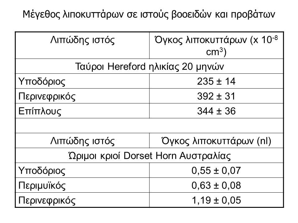 Λιπώδης ιστόςΌγκος λιποκυττάρων (x 10 -8 cm 3 ) Ταύροι Hereford ηλικίας 20 μηνών Υποδόριος235 ± 14 Περινεφρικός392 ± 31 Επίπλους344 ± 36 Λιπώδης ιστόςΌγκος λιποκυττάρων (nl) Ώριμοι κριοί Dorset Horn Αυστραλίας Υποδόριος0,55 ± 0,07 Περιμυϊκός0,63 ± 0,08 Περινεφρικός1,19 ± 0,05 Μέγεθος λιποκυττάρων σε ιστούς βοοειδών και προβάτων