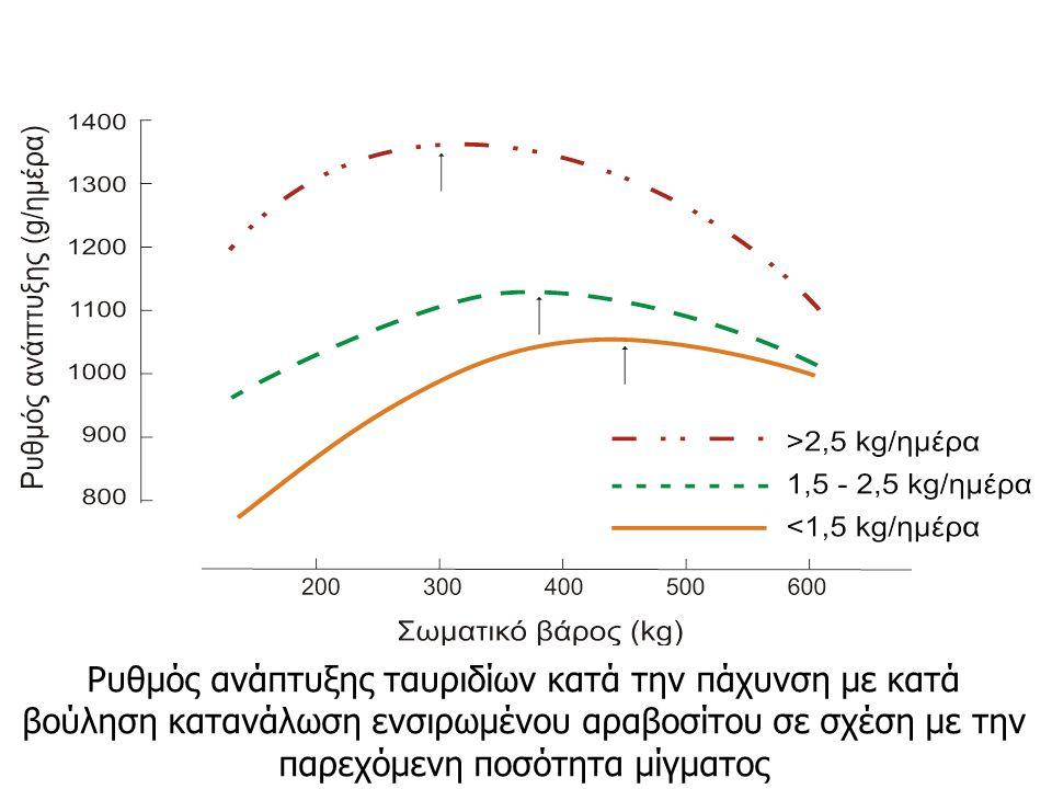 Ρυθμός ανάπτυξης ταυριδίων κατά την πάχυνση με κατά βούληση κατανάλωση ενσιρωμένου αραβοσίτου σε σχέση με την παρεχόμενη ποσότητα μίγματος