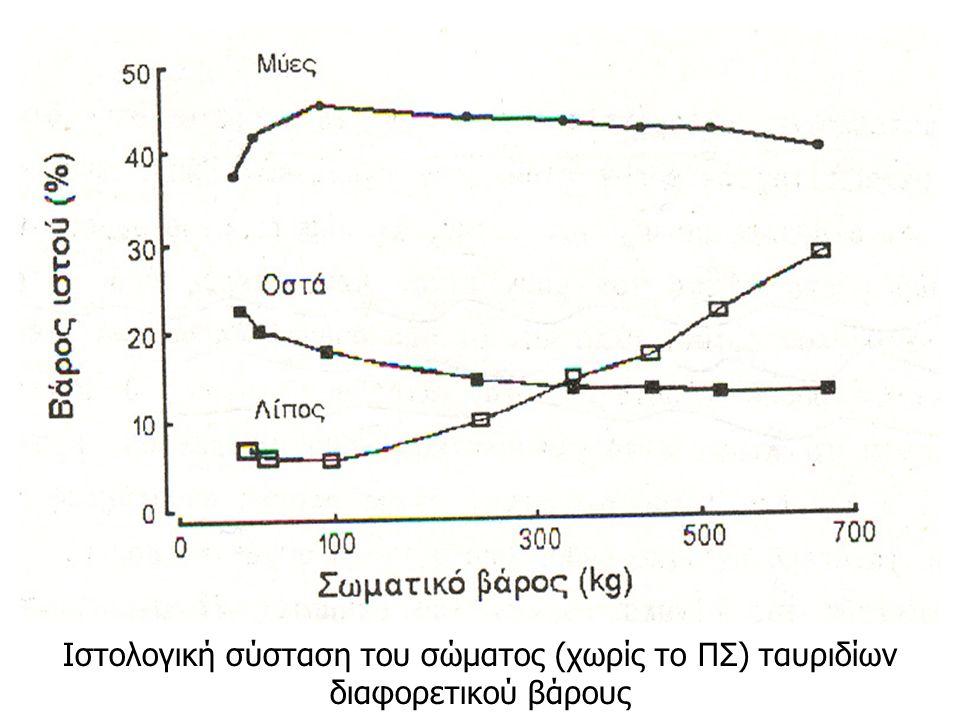 Ιστολογική σύσταση του σώματος (χωρίς το ΠΣ) ταυριδίων διαφορετικού βάρους