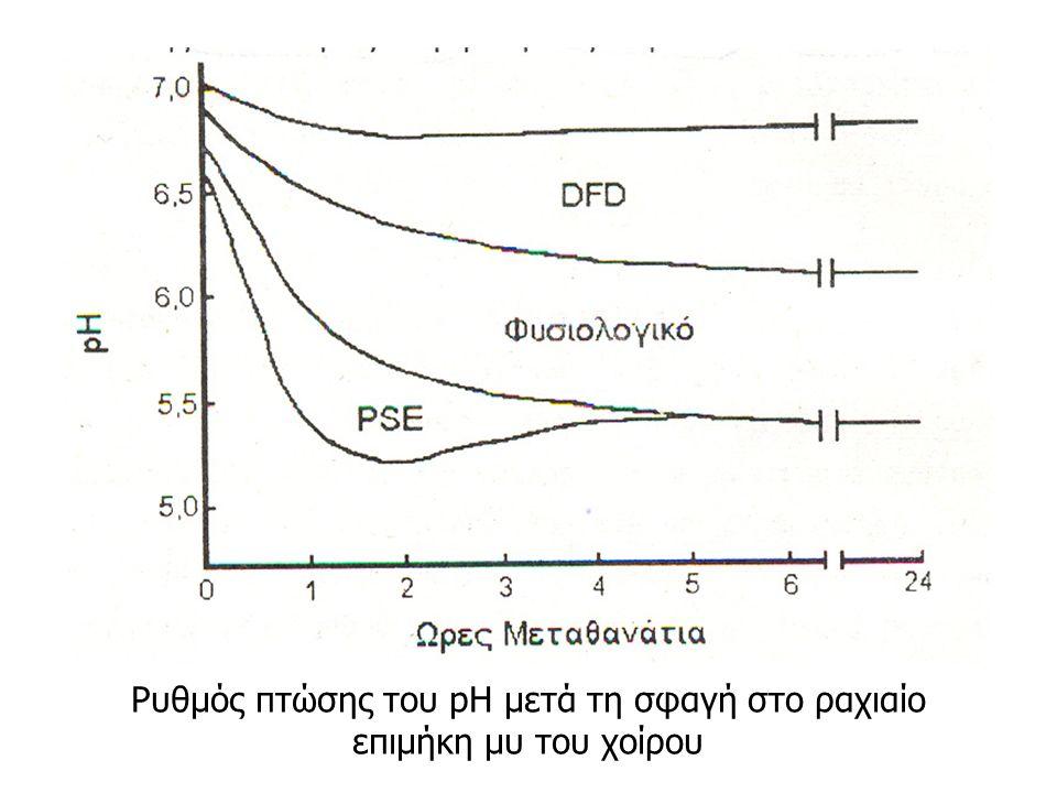 Ρυθμός πτώσης του pH μετά τη σφαγή στο ραχιαίο επιμήκη μυ του χοίρου