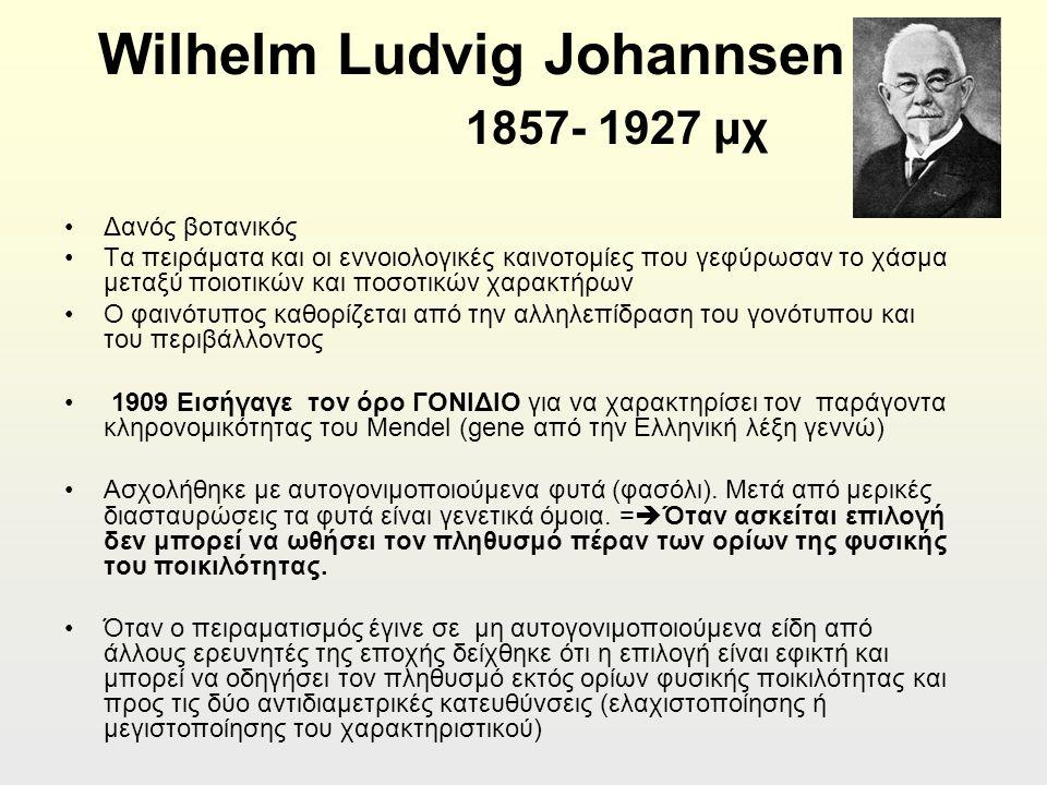 Wilhelm Ludvig Johannsen 1857- 1927 μχ Δανός βοτανικός Τα πειράματα και οι εννοιολογικές καινοτομίες που γεφύρωσαν το χάσμα μεταξύ ποιοτικών και ποσοτικών χαρακτήρων Ο φαινότυπος καθορίζεται από την αλληλεπίδραση του γονότυπου και του περιβάλλοντος 1909 Εισήγαγε τον όρο ΓΟΝΙΔΙΟ για να χαρακτηρίσει τον παράγοντα κληρονομικότητας του Mendel (gene από την Ελληνική λέξη γεννώ) Ασχολήθηκε με αυτογονιμοποιούμενα φυτά (φασόλι).