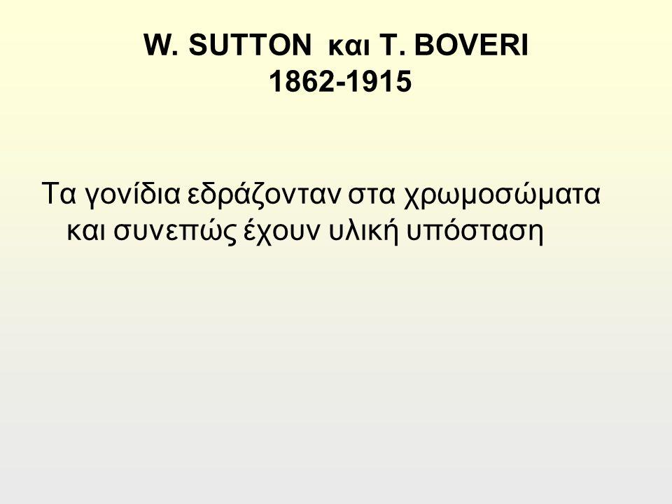 W. SUTTON και T.