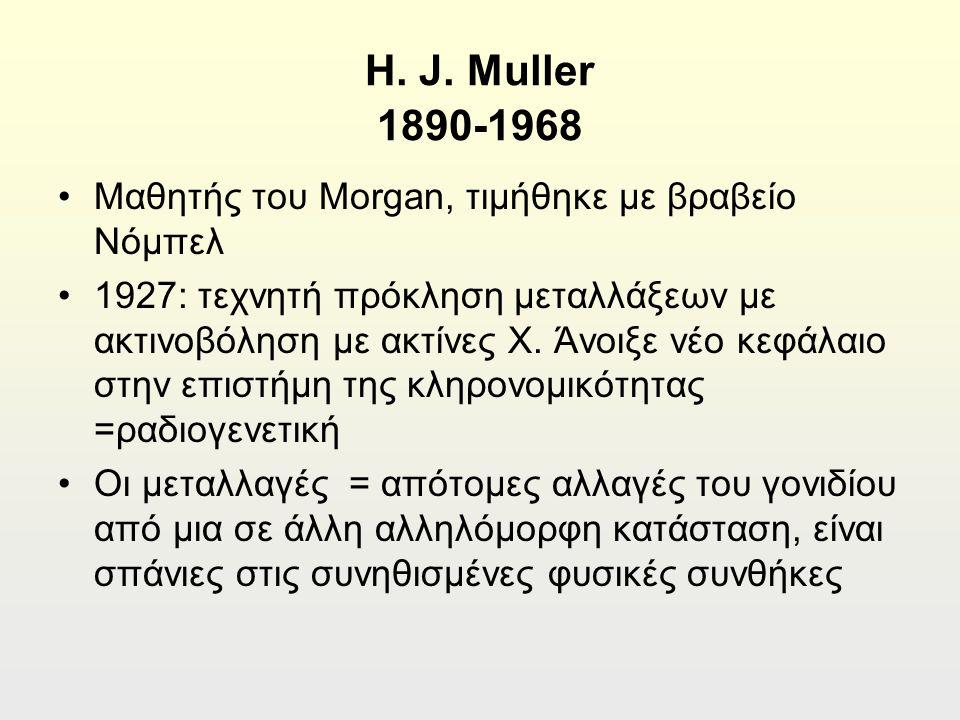 H. J.