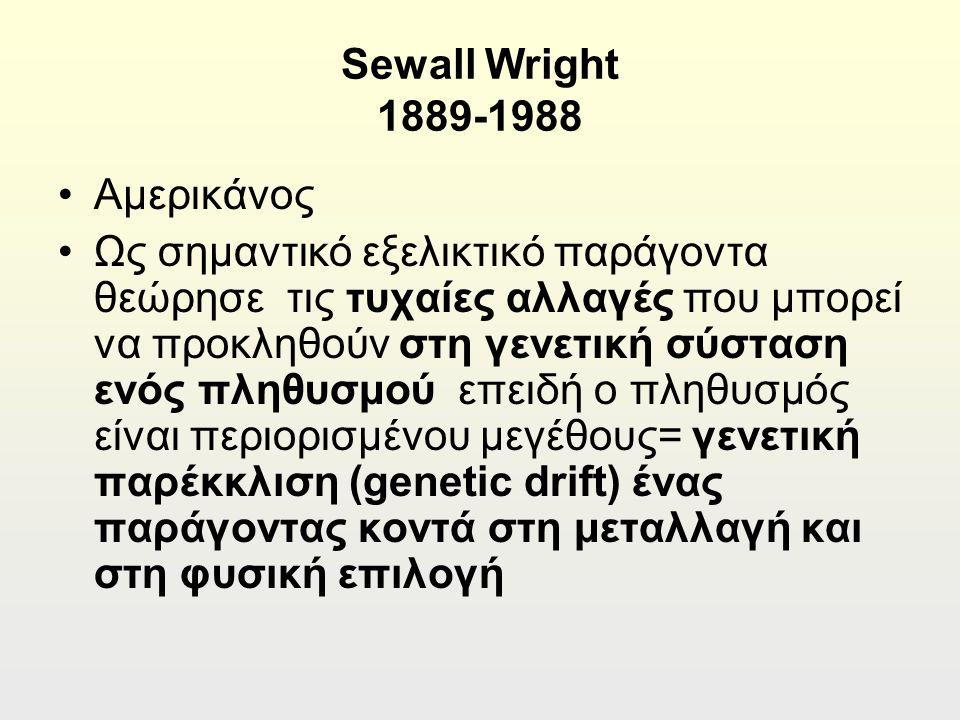 Sewall Wright 1889-1988 Αμερικάνος Ως σημαντικό εξελικτικό παράγοντα θεώρησε τις τυχαίες αλλαγές που μπορεί να προκληθούν στη γενετική σύσταση ενός πληθυσμού επειδή ο πληθυσμός είναι περιορισμένου μεγέθους= γενετική παρέκκλιση (genetic drift) ένας παράγοντας κοντά στη μεταλλαγή και στη φυσική επιλογή