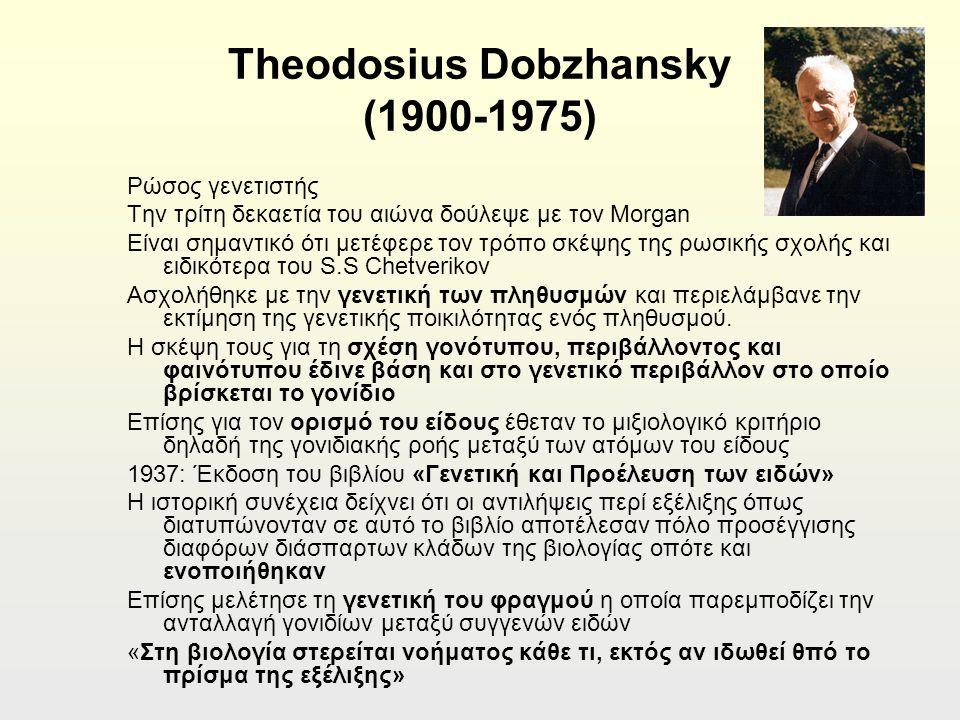 Theodosius Dobzhansky (1900-1975) Ρώσος γενετιστής Την τρίτη δεκαετία του αιώνα δούλεψε με τον Morgan Είναι σημαντικό ότι μετέφερε τον τρόπο σκέψης της ρωσικής σχολής και ειδικότερα του S.S Chetverikov Ασχολήθηκε με την γενετική των πληθυσμών και περιελάμβανε την εκτίμηση της γενετικής ποικιλότητας ενός πληθυσμού.
