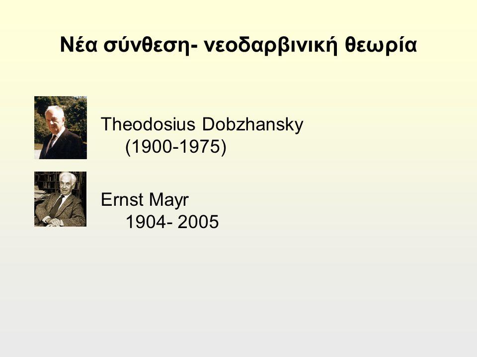 Νέα σύνθεση- νεοδαρβινική θεωρία Theodosius Dobzhansky (1900-1975) Ernst Mayr 1904- 2005