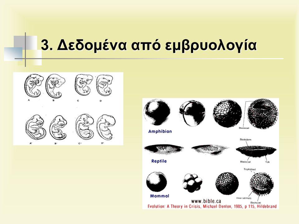 3. Δεδομένα από εμβρυολογία