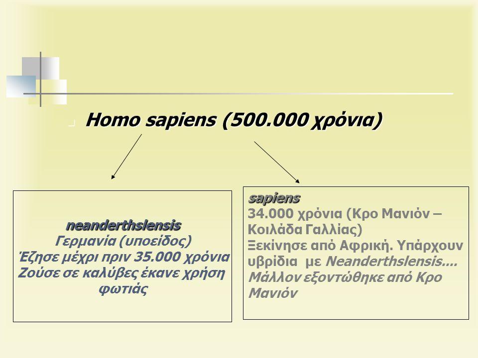 neanderthslensis Γερμανία (υποείδος) Έζησε μέχρι πριν 35.000 χρόνια Ζούσε σε καλύβες έκανε χρήση φωτιάς sapiens 34.000 χρόνια (Κρο Μανιόν – Κοιλάδα Γαλλίας) Ξεκίνησε από Αφρική.