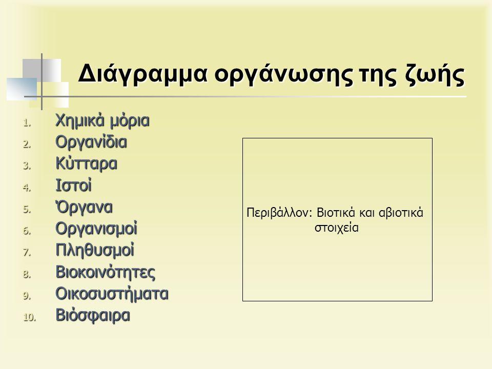 Διάγραμμα οργάνωσης της ζωής 1. Χημικά μόρια 2. Οργανίδια 3.