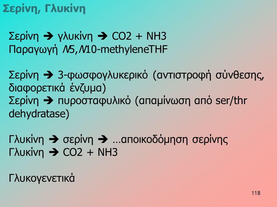 Σερίνη, Γλυκίνη Σερίνη  γλυκίνη  CO2 + NH3 Παραγωγή N5,N10-methyleneTHF Σερίνη  3-φωσφογλυκερικό (αντιστροφή σύνθεσης, διαφορετικά ένζυμα) Σερίνη  πυροσταφυλικό (απαμίνωση από ser/thr dehydratase) Γλυκίνη  σερίνη  …αποικοδόμηση σερίνης Γλυκίνη  CO2 + NH3 Γλυκογενετικά 118
