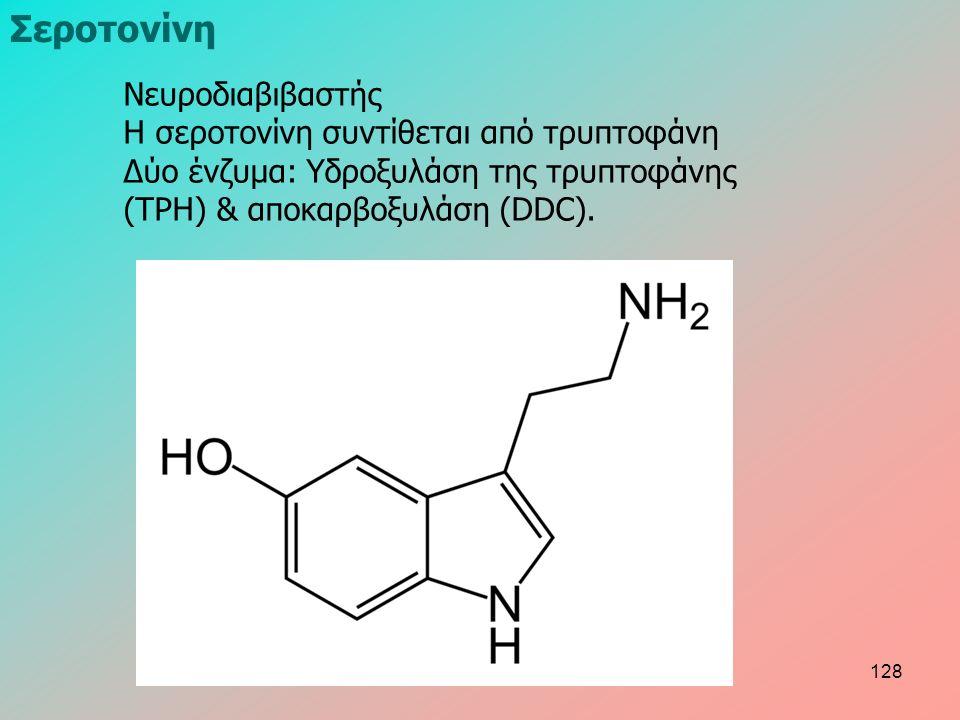 Νευροδιαβιβαστής Η σεροτονίνη συντίθεται από τρυπτοφάνη Δύο ένζυμα: Υδροξυλάση της τρυπτοφάνης (TPH) & αποκαρβοξυλάση (DDC). Σεροτονίνη 128