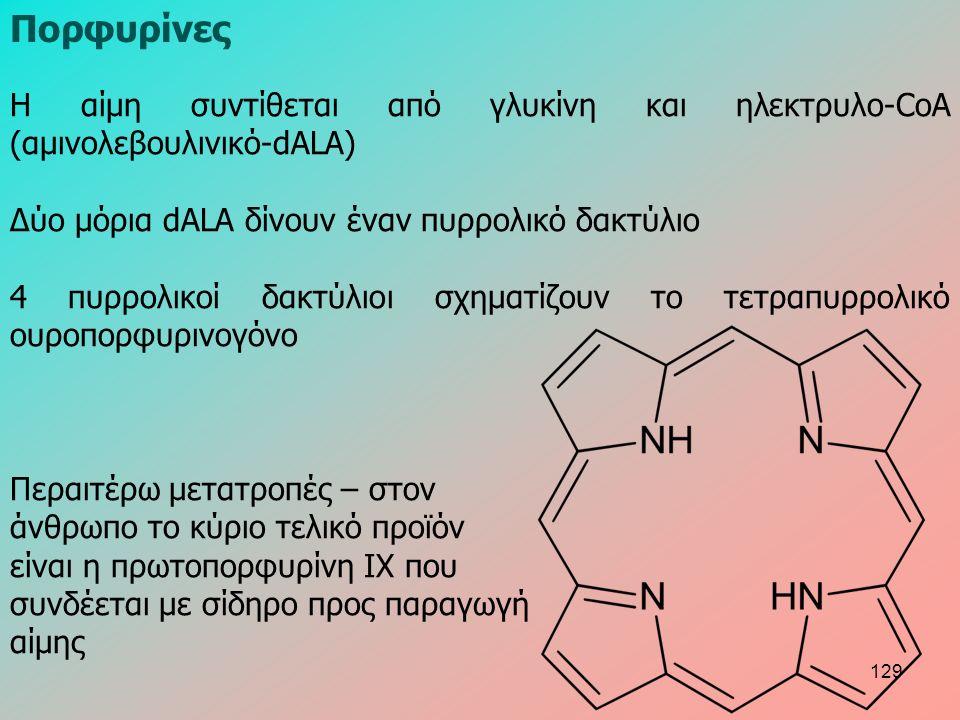 Η αίμη συντίθεται από γλυκίνη και ηλεκτρυλο-CoA (αμινολεβουλινικό-dALA) Δύο μόρια dALA δίνουν έναν πυρρολικό δακτύλιο 4 πυρρολικοί δακτύλιοι σχηματίζουν το τετραπυρρολικό ουροπορφυρινογόνο Περαιτέρω μετατροπές – στον άνθρωπο το κύριο τελικό προϊόν είναι η πρωτοπορφυρίνη ΙΧ που συνδέεται με σίδηρο προς παραγωγή αίμης Πορφυρίνες 129