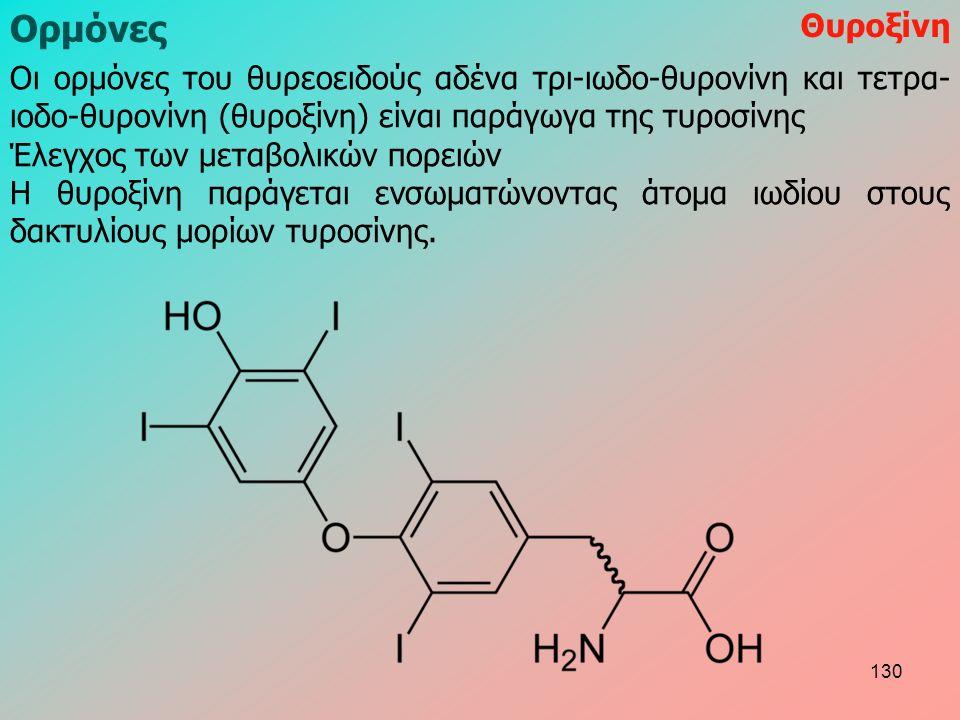 Ορμόνες Θυροξίνη Οι ορμόνες του θυρεοειδούς αδένα τρι-ιωδο-θυρονίνη και τετρα- ιοδο-θυρονίνη (θυροξίνη) είναι παράγωγα της τυροσίνης Έλεγχος των μεταβολικών πορειών Η θυροξίνη παράγεται ενσωματώνοντας άτομα ιωδίου στους δακτυλίους μορίων τυροσίνης.