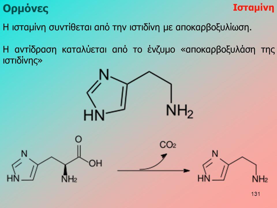 H ισταμίνη συντίθεται από την ιστιδίνη με αποκαρβοξυλίωση.