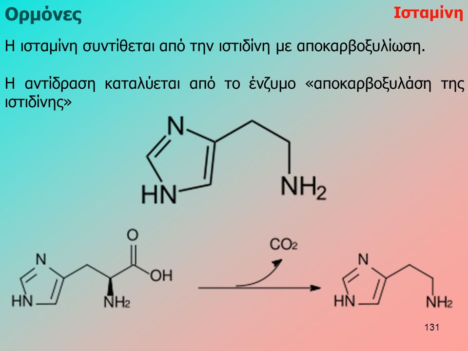 H ισταμίνη συντίθεται από την ιστιδίνη με αποκαρβοξυλίωση. Η αντίδραση καταλύεται από το ένζυμο «αποκαρβοξυλάση της ιστιδίνης» Ισταμίνη Ορμόνες 131