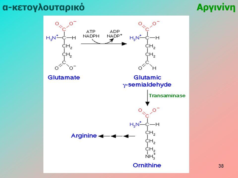 α-κετογλουταρικόΑργινίνη 38