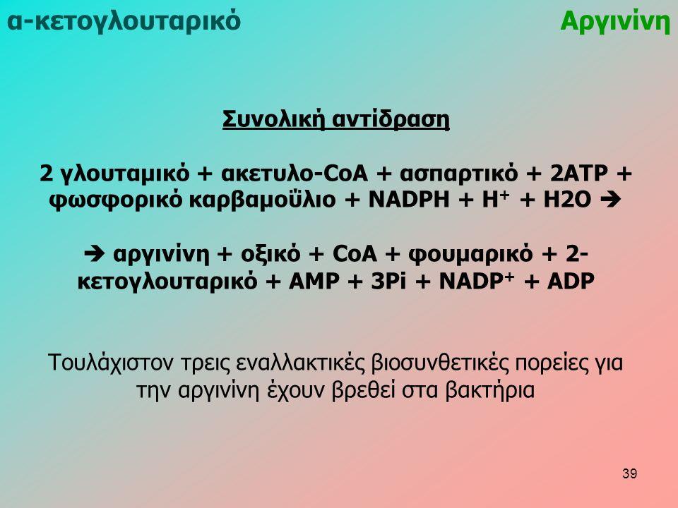 Συνολική αντίδραση 2 γλουταμικό + ακετυλο-CoA + ασπαρτικό + 2ATP + φωσφορικό καρβαμοΰλιο + NADPH + H + + H2O   αργινίνη + οξικό + CoA + φουμαρικό + 2- κετογλουταρικό + AMP + 3Pi + NADP + + ADP Τουλάχιστον τρεις εναλλακτικές βιοσυνθετικές πορείες για την αργινίνη έχουν βρεθεί στα βακτήρια α-κετογλουταρικόΑργινίνη 39