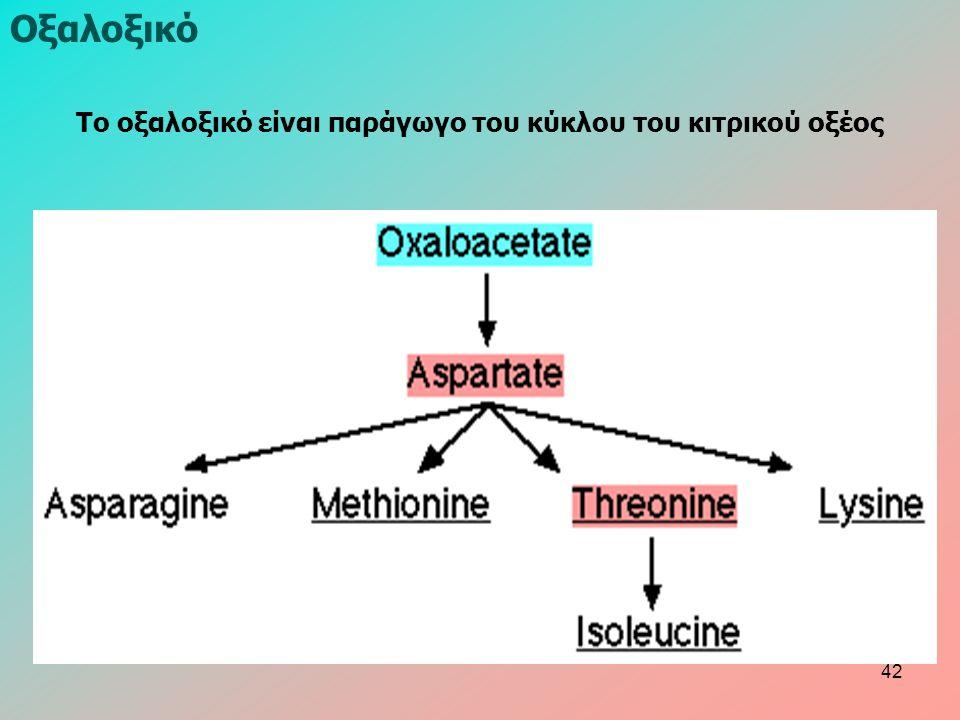Οξαλοξικό Το οξαλοξικό είναι παράγωγο του κύκλου του κιτρικού οξέος 42