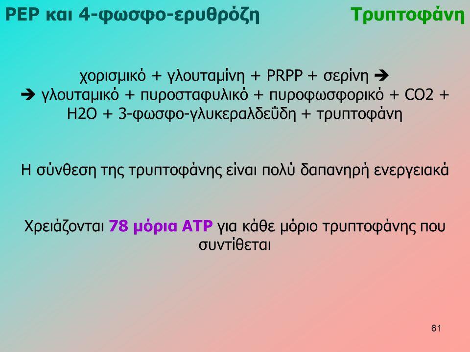 χορισμικό + γλουταμίνη + PRPP + σερίνη   γλουταμικό + πυροσταφυλικό + πυροφωσφορικό + CO2 + H2O + 3-φωσφο-γλυκεραλδεΰδη + τρυπτοφάνη Η σύνθεση της τρυπτοφάνης είναι πολύ δαπανηρή ενεργειακά Χρειάζονται 78 μόρια ATP για κάθε μόριο τρυπτοφάνης που συντίθεται ΡΕΡ και 4-φωσφο-ερυθρόζηΤρυπτοφάνη 61