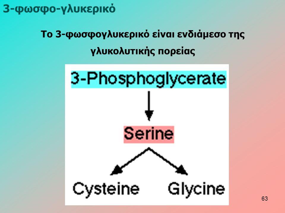 3-φωσφο-γλυκερικό Το 3-φωσφογλυκερικό είναι ενδιάμεσο της γλυκολυτικής πορείας 63